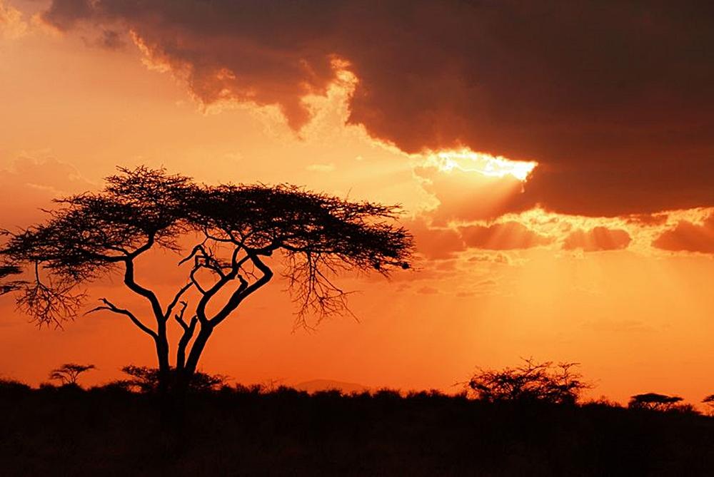 samburu-agencia-de-viajes-monoparental-lugares-disney