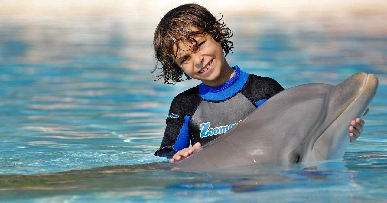 nadando-delfines-algarve-viajacontuhijo