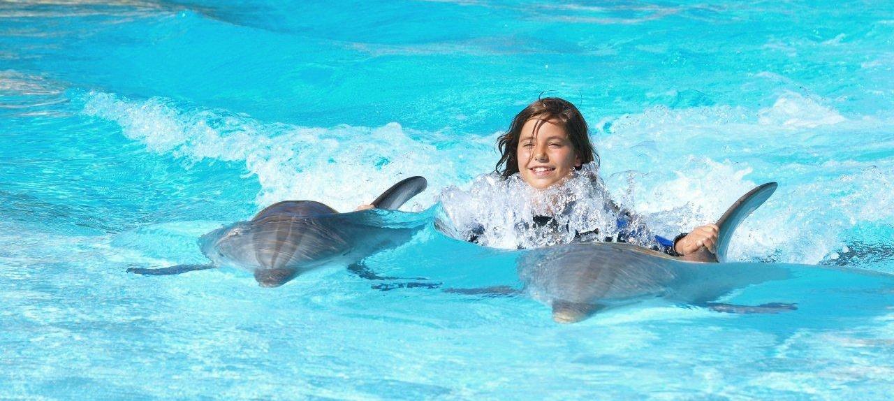 nadando-delfines-algarve-viajes-monoparentales