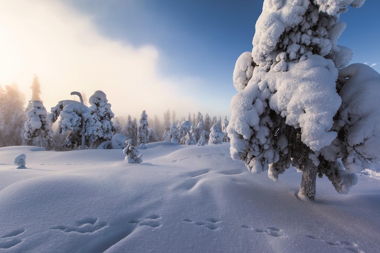 puente-diciembre-arctic-circle-vacaciones-monoparentales